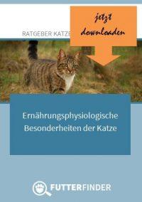 gutes Katzenfutter Ratgeber